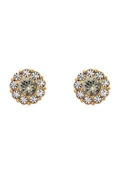 LILY AND ROSE Petite Miss Sofia Earrings Black Diamond Bubbleroom.fi