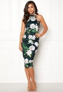 Alesia Bodycon Midi Dress