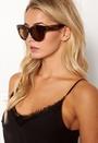 Pallenberg Sunglasses